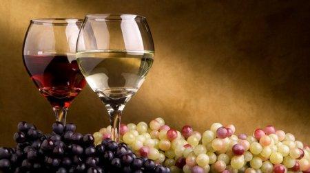 Алкогольный туризм в Болгарии может стать неприкасаемым