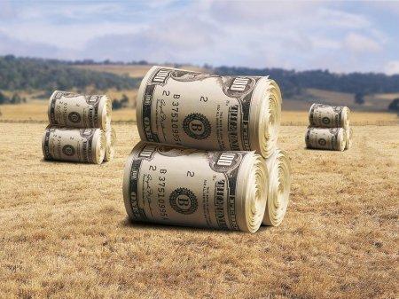 Продавать землю или не продавать?