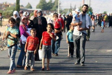 Число беженцев в Болгарии уже исчисляется сотнями