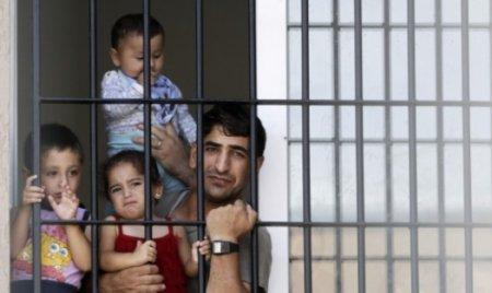 Статус беженца в Болгарии будут давать за три недели