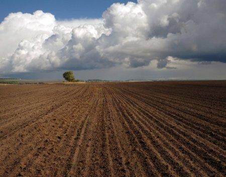 Болгария планирует усложнить условия покупки земли иностранцами