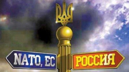 «Правые» Болгарии призывают Украину не поддаваться «вымогательству России»