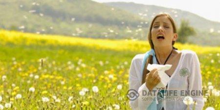 Каждый третий болгарин страдает от аллергии
